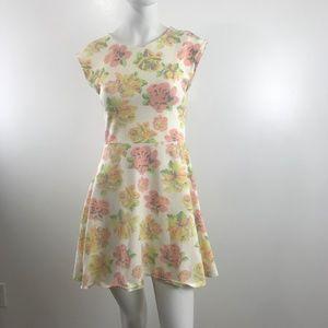 Aritzia Talula Floral Mini Dress